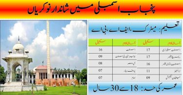 Provincial Assembly of Punjab Jobs 2020   Apply Online