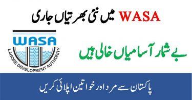 Water and Sanitation Agency Jobs 2020