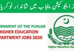 Higher Education Department Punjab Jobs 2020   Apply online