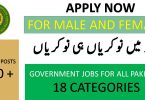 PASSCO Jobs by Pakistan Testing Services 2020| Apply Online