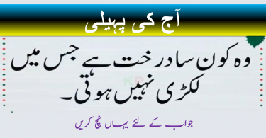 7 second riddles in urdu