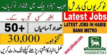 Habib Metro bank job 2021