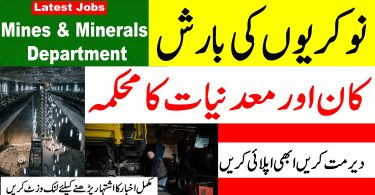 Latest Jobs in Mines and Minerals Department